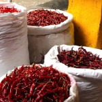 【世界一周26日目:インド】ムンバイ コラバ観光&スパイスマーケット!